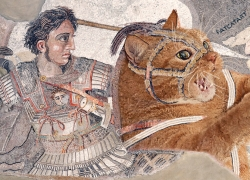 Alexander the Great riding the Fat Cat at the Battle of Issus, mosaics from Pompeii