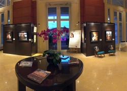 The exhibition panorama
