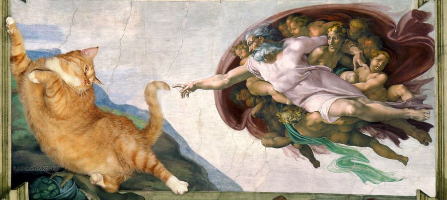 Микеланджело. Сотворение кота.