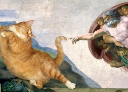 Michelangelo, The Creation of cAt-dam / Микеланджело,  Сотворение Кота