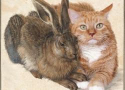 Albrecht Dürer, Hare and Cat / Альбрехт Дюрер, Заяц и Кот
