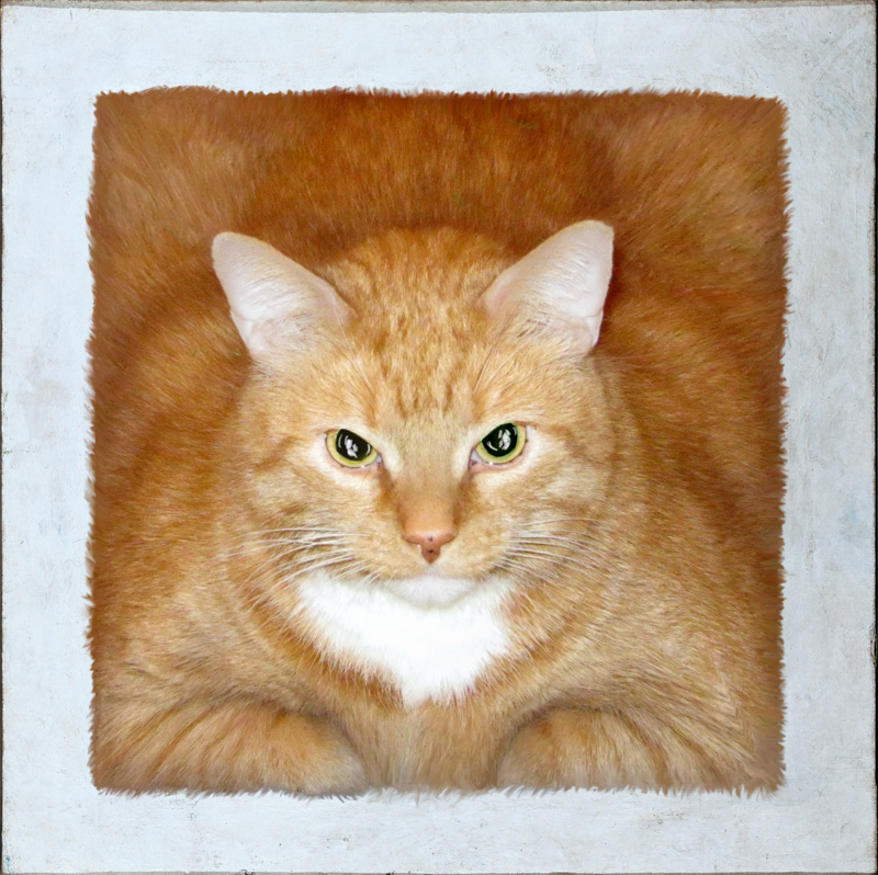 FatCatArt Kazimir Malevich, Red Square or Cat's Suprematism
