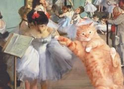 The Dance Class Metropolitan Cat