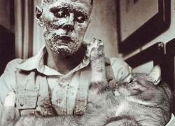 Joseph Beuys, How to Explain Pictures to a Living Fat Cat
