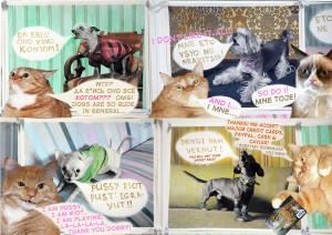 Толстый кот vs. Бешеные псы