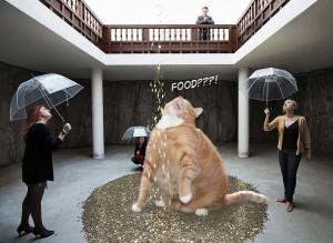 Vadim Zakharov, Fat Cat Danae. Stop waisting money, give me food!!!!