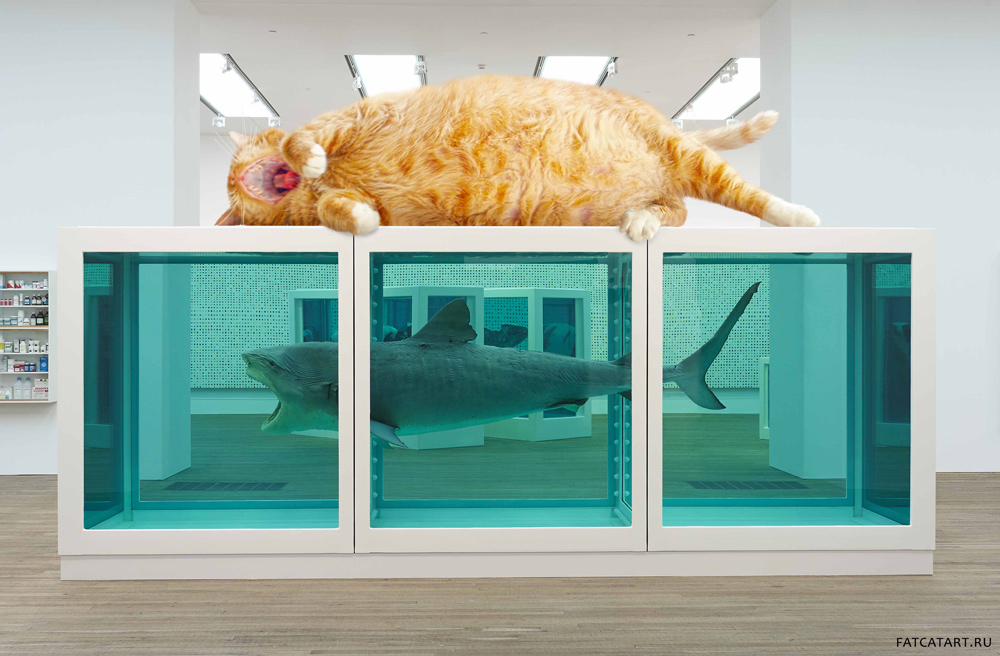 Damien Hirst. The Physical Impossibility of Falling Down in the Mind of Someone Sleeping. From Zarathustra the Cat's Mewseum of Contemporary Art