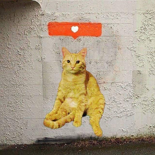 Кот, которого нарисовал Бэнкси