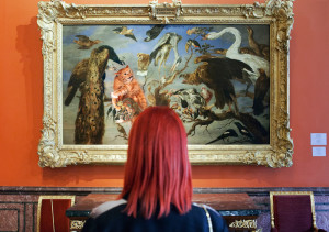 The Cat Concert by Frans Snyders on the Hermitage Museum wall. Photo by Polina Tverdaya|Sobaka.ru