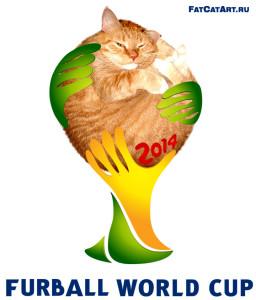 Чемпионат мира по котоболу 2014