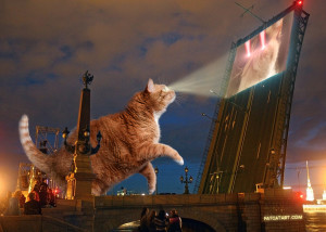 Projector Cat vs. Laser Cat. Yes We shall graciousely screen viral cats Laser Cat included!