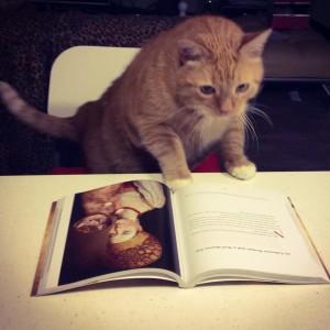 book-insta