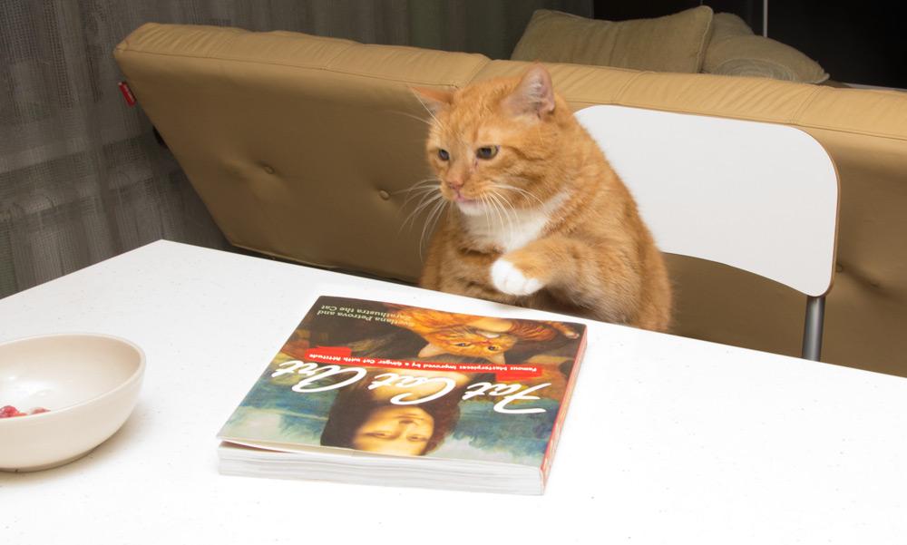zara-book2