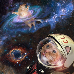 Zarathustra the space cat, a his first flight with Yuri Gagarin