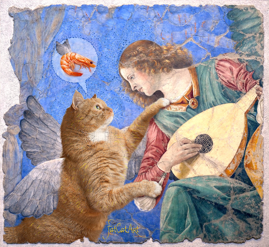 Melozzo da Forli, Angel playing lute to his cat