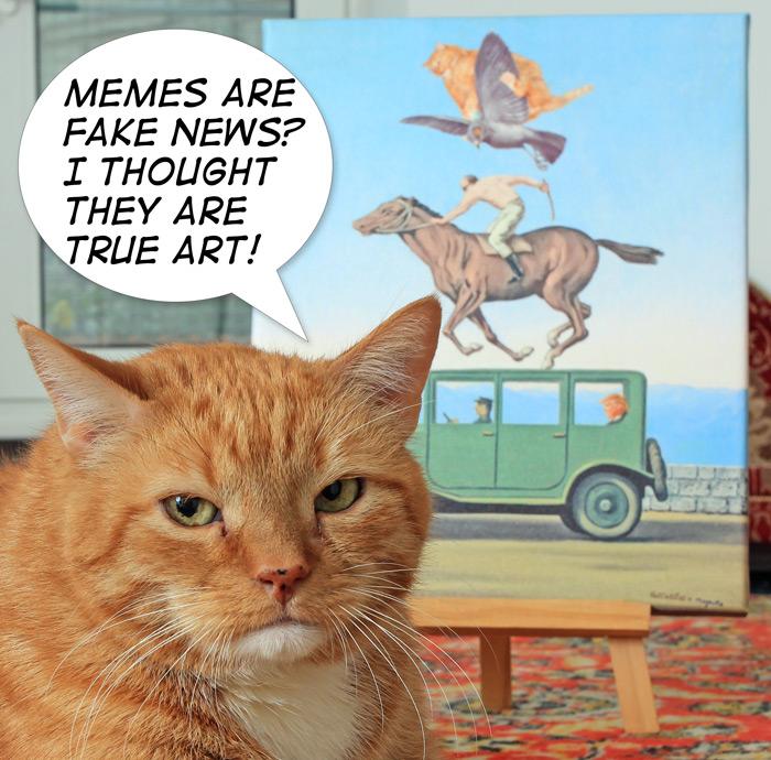 fake-news-IMG_6348-w