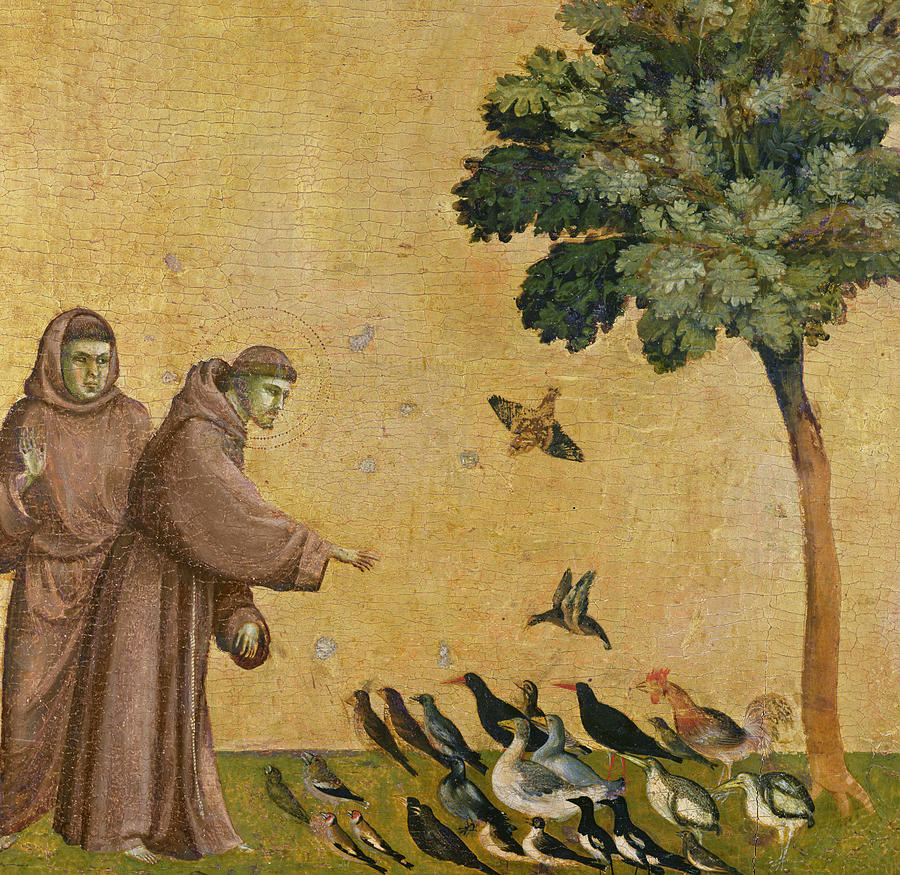 Giotto, St.Francis of Assisi, preaching to the birds, Louvre museum