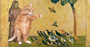 Giotto-Sermon-to-the-birds-cat-min