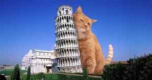 Pisa-Tower-cat-min
