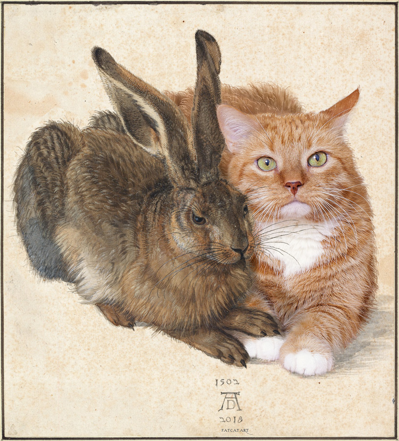 Albrecht Dürer, Hare and Cat