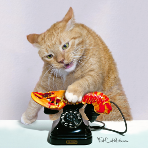 Salvador Dalí, Call me on my Lobster Telephone