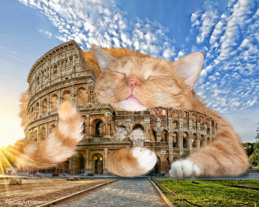 The Colosseum cat is colossal