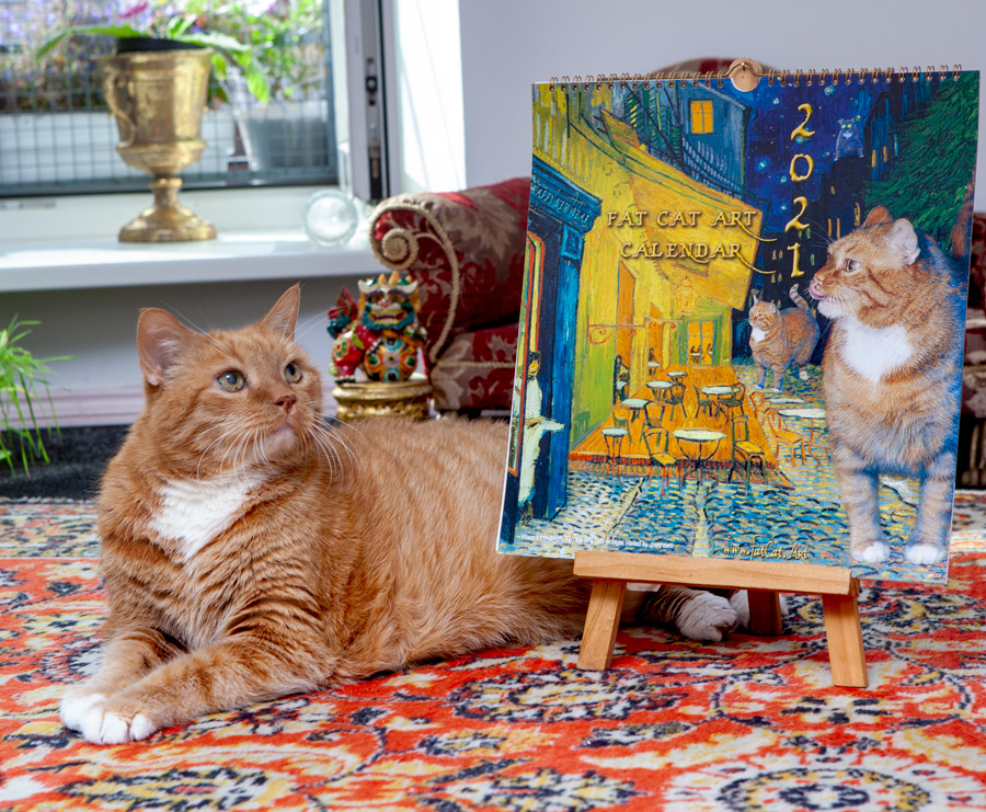 Zarathustra the Cat with his 2021 Calendar